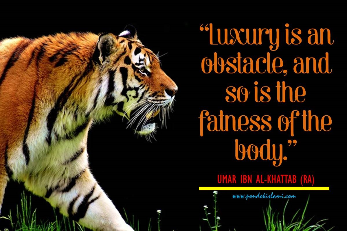 umar-bin-khattab-quotes-luxury-and-fatness