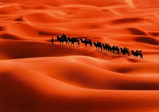 kisah-nabi-syits-nabi-yang-menerima-suhuf-terbanyak