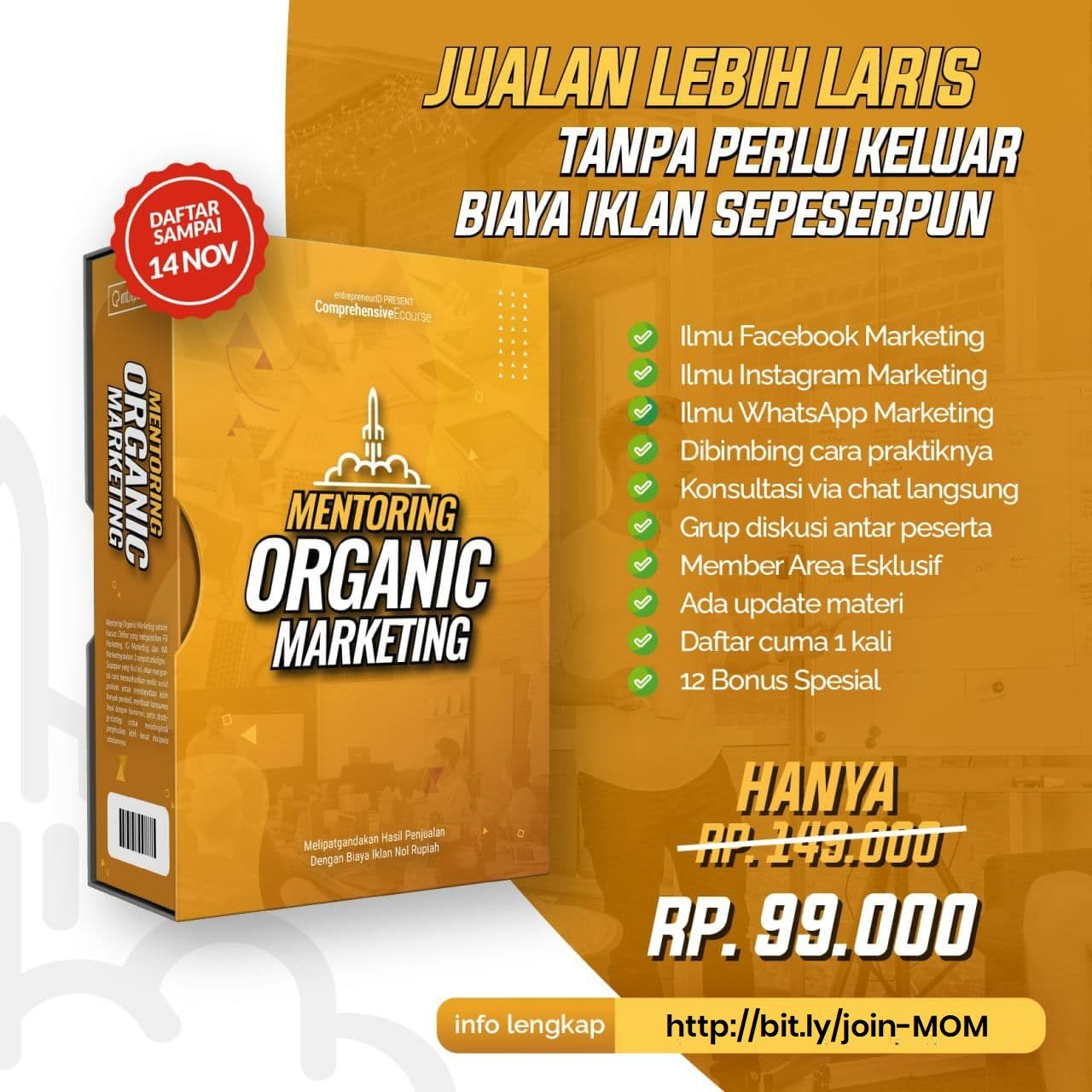 flyer-mentoring-organic-marketing