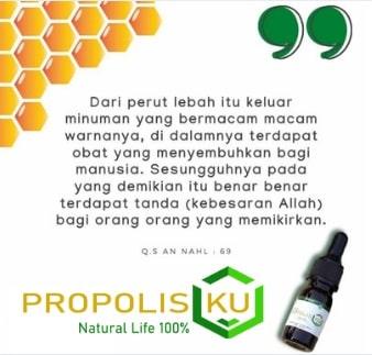 propolisku-logo-an-nahl