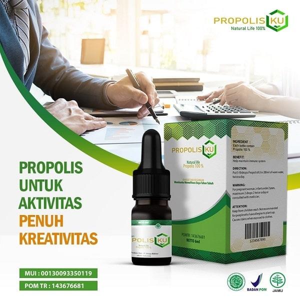 propolisku-manfaat-aktif